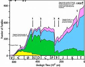 Geol 204 The Fossil Record  When Life Nearly Died  The Permo