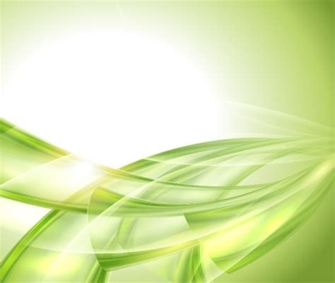 vector illustration  natural green abstract background