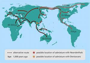 Image Gallery human evolution and migration