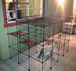 Build a do it yourself outdoor cat enclosure or run cat for Dog run cage enclosure
