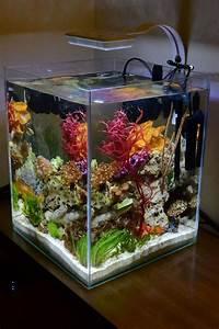 Stunning Aquarium Design Ideas For Indoor Decorations 46