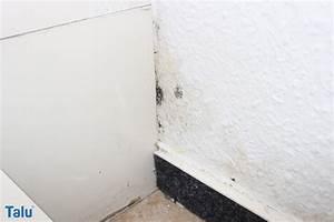Schimmelflecken Aus Stoff Entfernen : stockflecken entfernen so werden sie schimmelflecken los ~ Orissabook.com Haus und Dekorationen