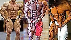 Forum 2021  Why Oxandrolone Is The Must Bodybuilding Program