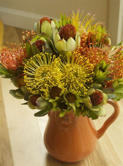 flower arrangement  pincushion protea