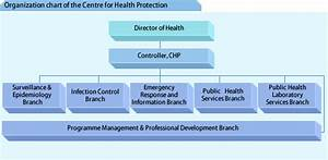 Chp Organizational Chart Centre For Health Protection The Organization