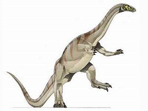 12 best images about Riojasaurus (Triassic) on Pinterest ...