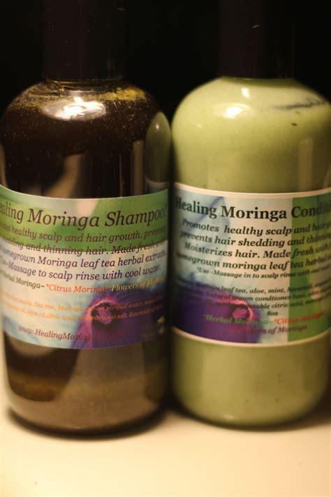 organic moringa shampoos