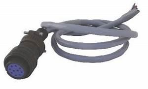 10 Pin Wiring Harness : reno 10 pin harness reno loop detector wiring harnesses ~ A.2002-acura-tl-radio.info Haus und Dekorationen