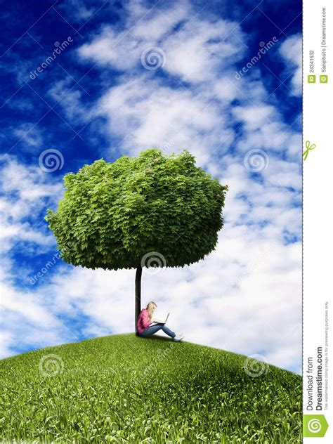 girl  tree  laptop stock photo image