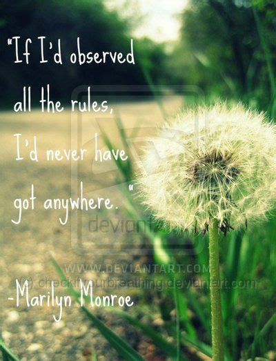 Best 25+ Dandelion Quotes Ideas On Pinterest  Flower Child Quotes, Hippie Words And Growing Quotes