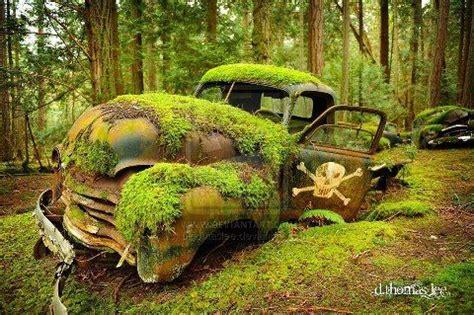 mini pelle occasion voitures abandonnees epave voiture