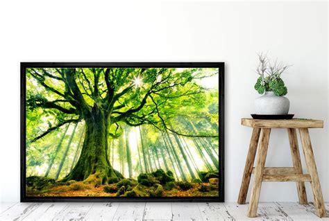 buy giant birch tree landscape wall art print