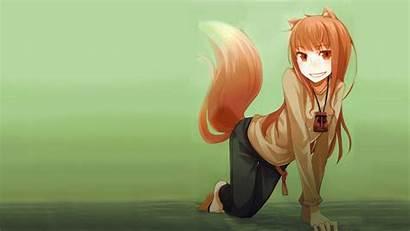 Wolf Spice Holo Wallpapers Waifu Anime Px