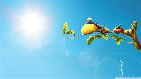 Funny Birds Wallpaper Wide Screen Wallpaper 1080p2k4k