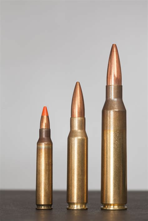 223, 308, 338 Lapua Magnum We've Got A 223 & A 308