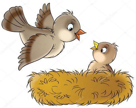 Cute Baby Birds In Nest