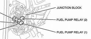 Isuzu Hilander Wiring Diagram