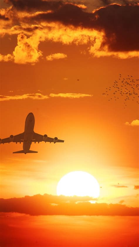 flight sunset  wallpapers hd wallpapers id