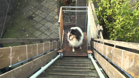 Treppenlifte Für Hunde
