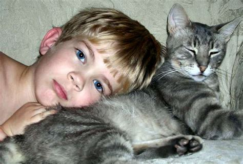 Free Boy And Cat Stock Photo Freeimagescom