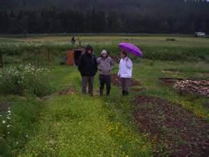 Refaire Son Jardin : au jardin de simon blog officiel de l 39 association culturelle franco allemande ~ Nature-et-papiers.com Idées de Décoration
