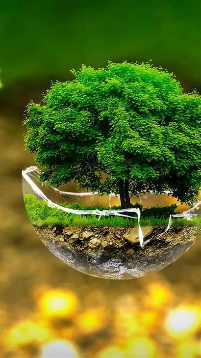Creative Environment Tree 4k Wallpapers Samsung Galaxy