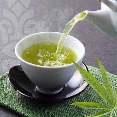 cuisine au cannabis thé au cannabis zativo