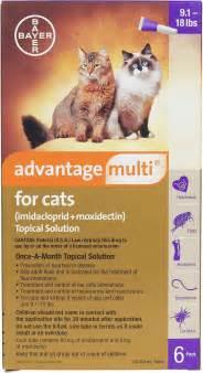 advantage multi cats advantage multi for cats purple 9 1 18lbs 6 box