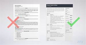 Format For Resume For Internship Esthetician Resume Sample 20 Skills Objectives Tips