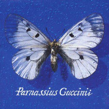 Guccini Testi by Farewell Testo Francesco Guccini Mtv Testi E Canzoni