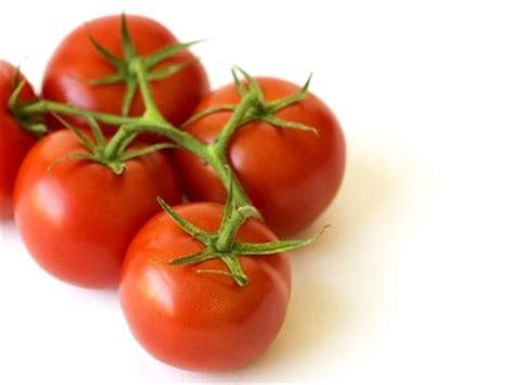 recettes cuisine bio tomate le fruit roi des légumes tomate tomates