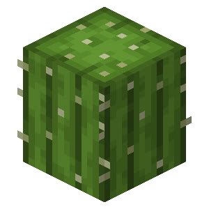 cactus official minecraft wiki