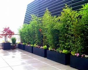 Billiger Sichtschutz Für Garten : kann ich bambus im k bel halten balkon haus garten ~ Indierocktalk.com Haus und Dekorationen