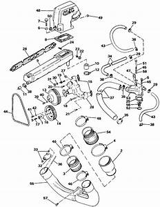 Omc Stern Drive Exhaust  U0026 Cooling Parts For 1987 5 0 L 504amftc Stern Drive