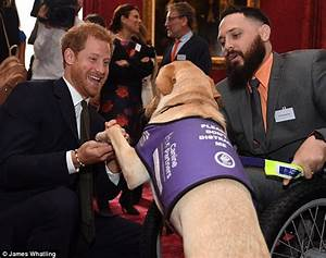 William and Harry host a Heads Together reception | Daily ...