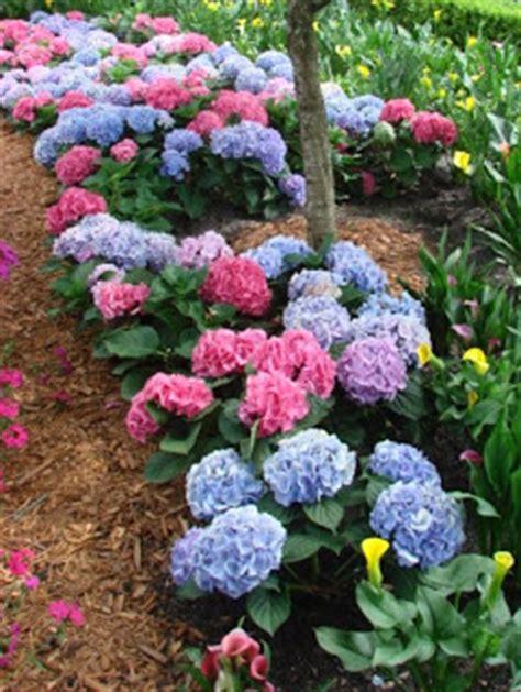 earth shattering gardening am i blue