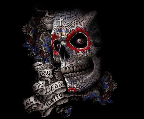 Animal Skull Wallpaper - 594 best images about grim reaper on