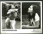 Wide Sargasso Sea 8x10 BW movie still Karina Lombard | eBay