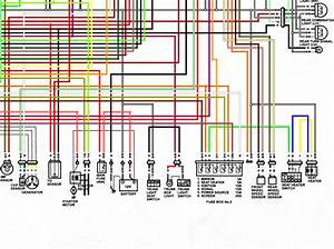2018 Burgman Wiring Diagram In Color