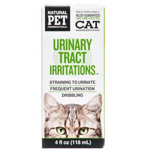 cat urinary tract infection pet urinary tract irritations homeopathic relief