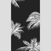 black-and-white-backgrounds