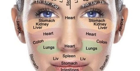 face mapping  window   health  wellbeing