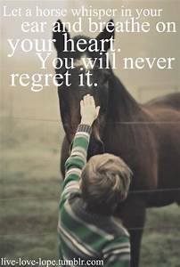 Let a horse whisper in your ear and breathe on your heart ...