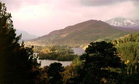 Love of Scotland: Glen Affric