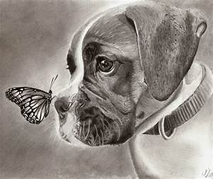 10 Lovely Dog Drawings for Inspiration - Hative