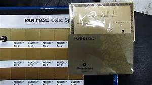 Pantone 871c