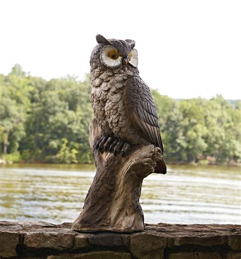 garden owl statue find   lawn decor  sears