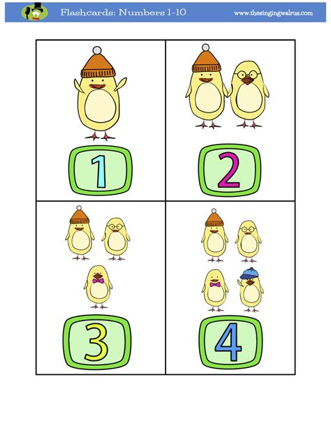 counting numbers  flashcards   singing walrus