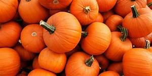 Is, Pumpkin, A, Fruit, Or, Vegetable, Pumpkin, Is, A, Fruit, Here, U0026, 39, S, Why