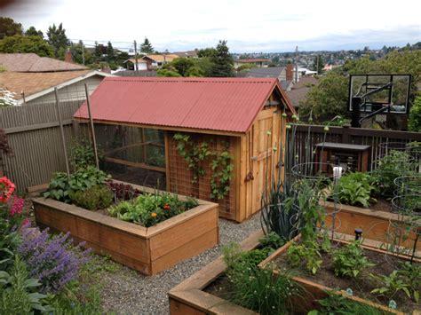 chicken garden design don t be the last person to get backyard chickens estately blog